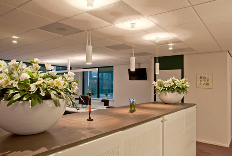 Vijf lampen die je binnenplanten weelderig doen groeien en bloeien!