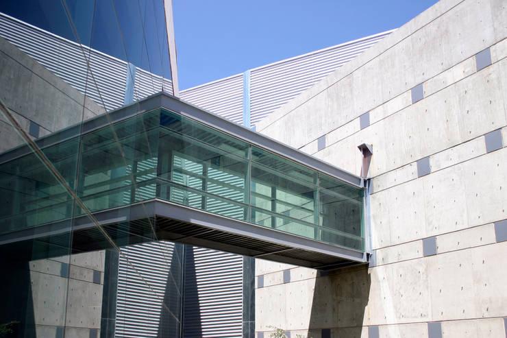Puente del acervo a la sala de lectura: Escuelas de estilo  por LEAP Laboratorio en Arquitectura Progresiva