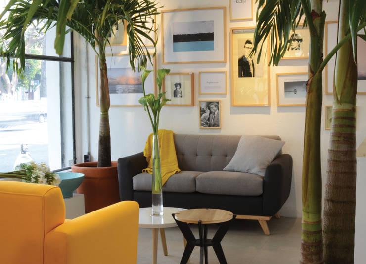 Clorofilia 2015: Salas de estilo moderno por Clorofilia