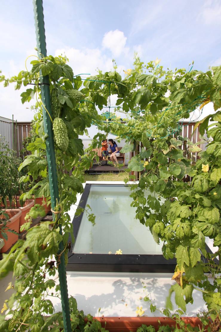屋上菜園: FCDが手掛けた庭です。