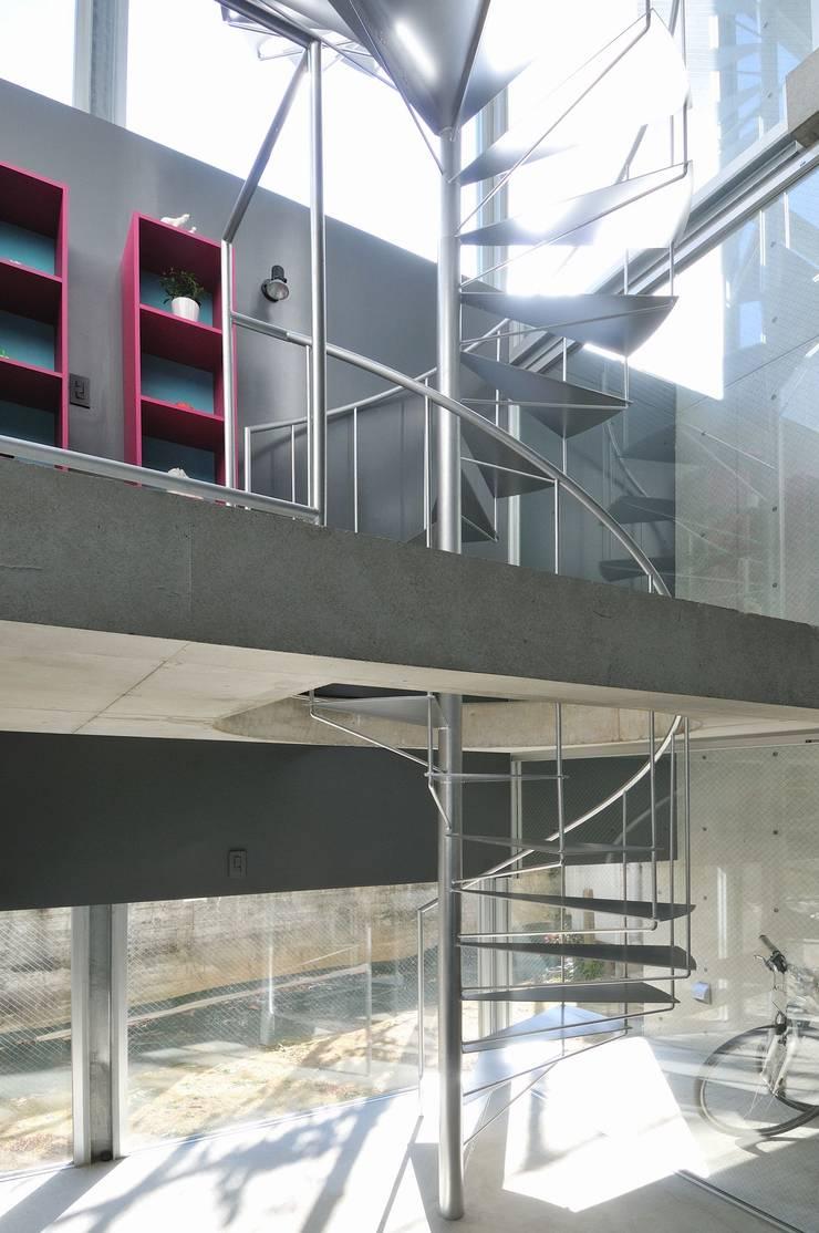 light-phase: 岡村泰之建築設計事務所が手掛けた廊下 & 玄関です。