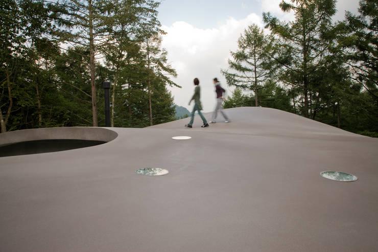 曲面屋根の散歩: PODAが手掛けたルーフバルコニーです。,