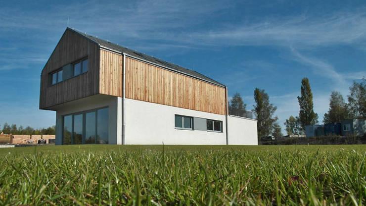 Osiedle Srebrne Stawy – dom typ B: styl , w kategorii Domy zaprojektowany przez j.krysiak,Nowoczesny