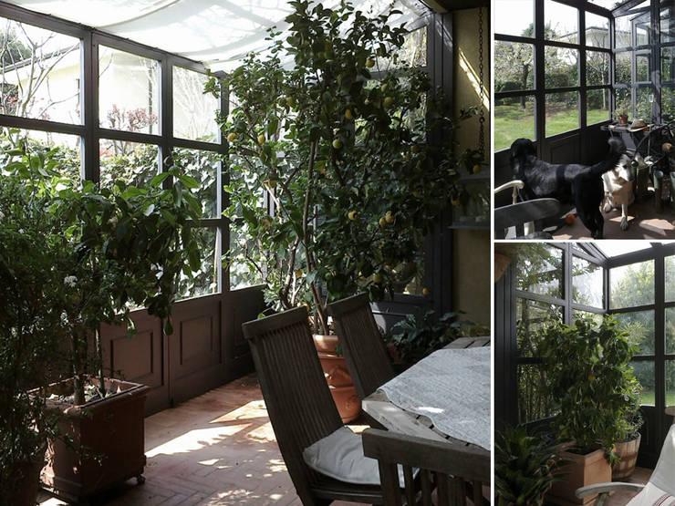 giardini d'inverno: Giardino d'inverno in stile  di Studio Maggiore Architettura