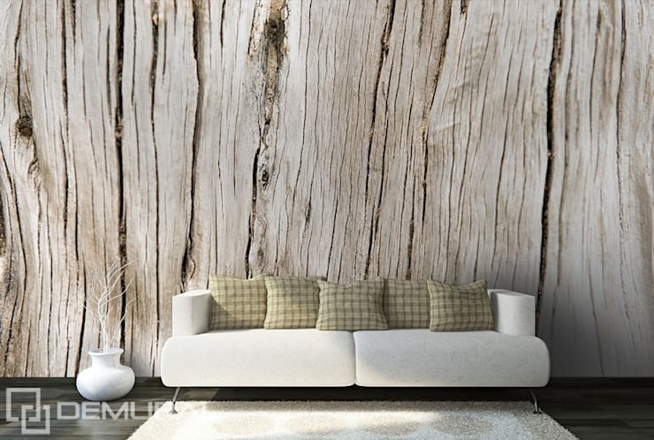 Cracked plank:  Living room by Demural