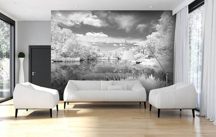 Grey lake:  Living room by Demural