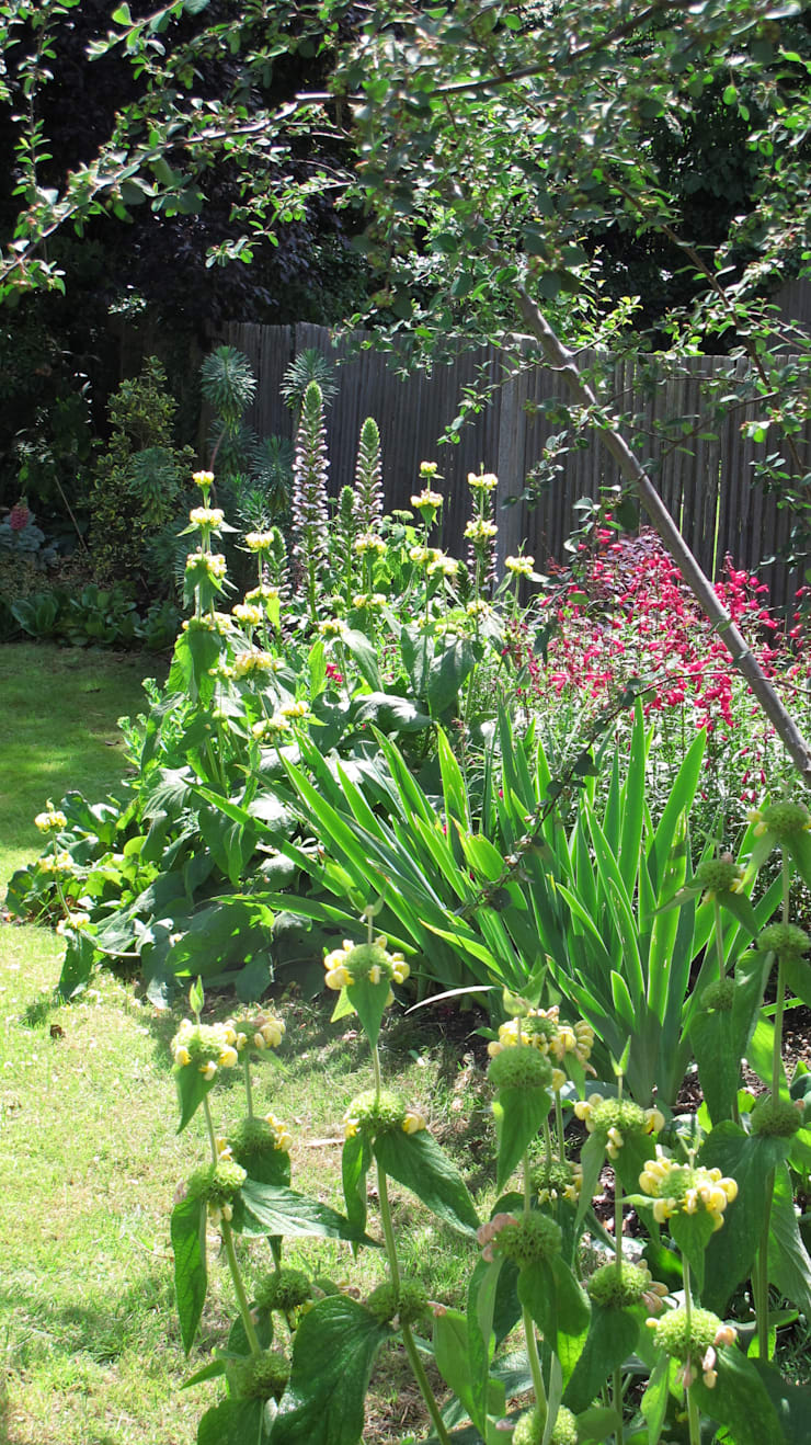 flower border:  Garden  by Fenton Roberts Garden Design