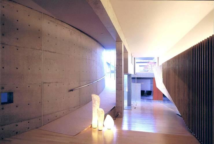 盛岡の家 : 中村弘道・都市建築 計画設計研究所/HIROMICHI NAKAMURA ARCHITECT & ASSOCIATESが手掛けた廊下 & 玄関です。