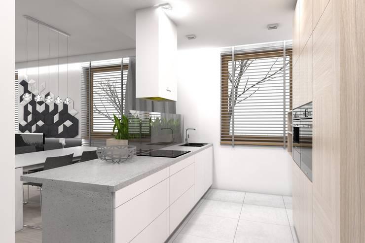 Projekt domu jednorodzinnego wykonany dla A2.Studio Pracownia Architektury: styl , w kategorii Kuchnia zaprojektowany przez BAGUA Pracownia Architektury Wnętrz