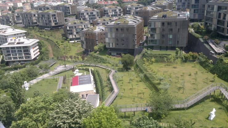 Ortaköy Parke İç Dekorasyon – THY ULUS SİTE WOOD COLLECTİON NATUREL OAK :  tarz Oturma Odası