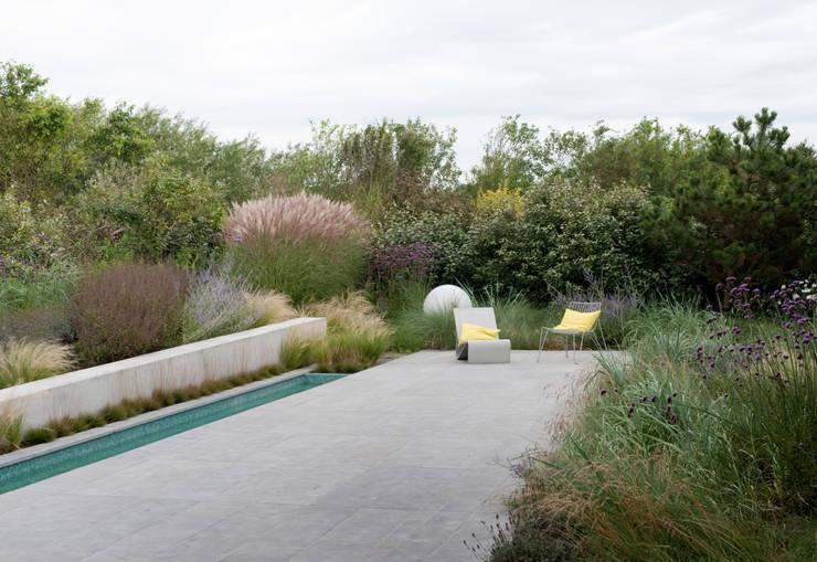 minimalistic architecture floating in dune landscape:  Tuin door Andrew van Egmond (ontwerp van tuin en landschap)