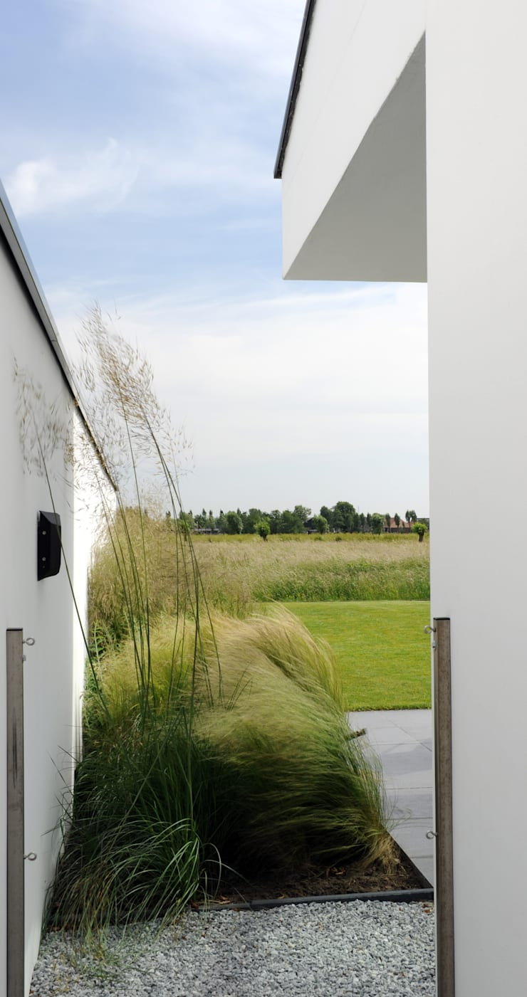 Mengsel van siergrassen die aansluit bij de polder- en weidekarakter:  Tuin door Andrew van Egmond (ontwerp van tuin en landschap), Minimalistisch