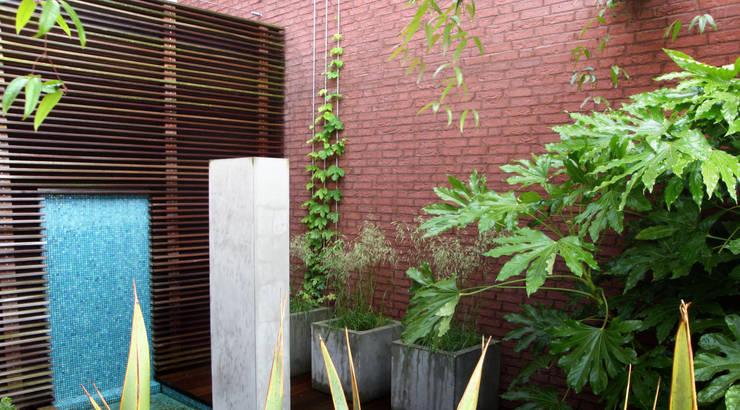 Patiotuin zuid holland:  Tuin door Andrew van Egmond (ontwerp van tuin en landschap), Modern