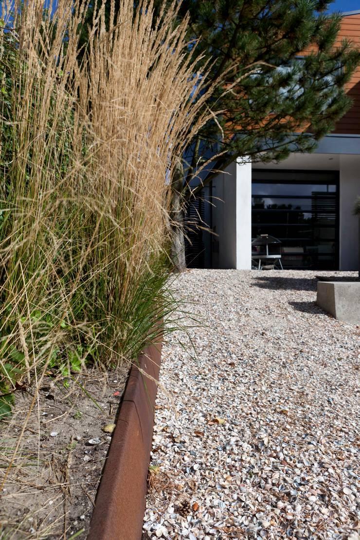 Duintuin Noordwijk Holland: moderne Tuin door Andrew van Egmond (ontwerp van tuin en landschap)