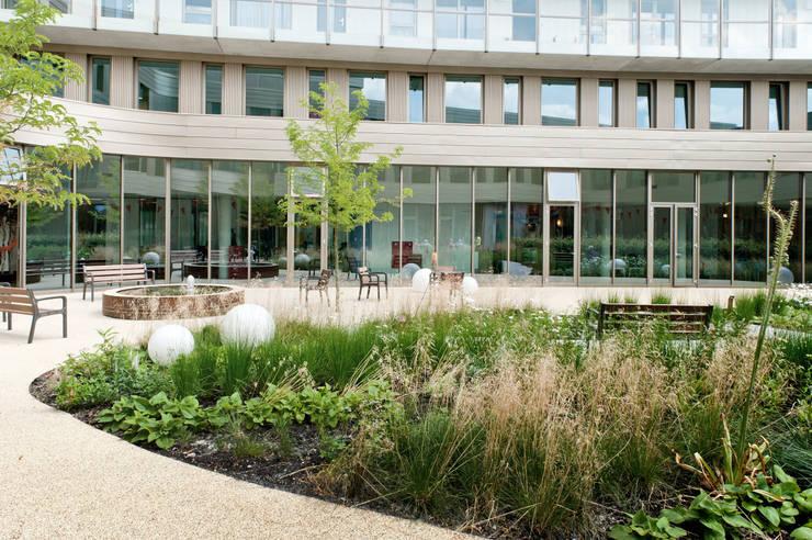 Binnentuin voor dementerende ouderen:  Gezondheidscentra door Andrew van Egmond (ontwerp van tuin en landschap), Modern