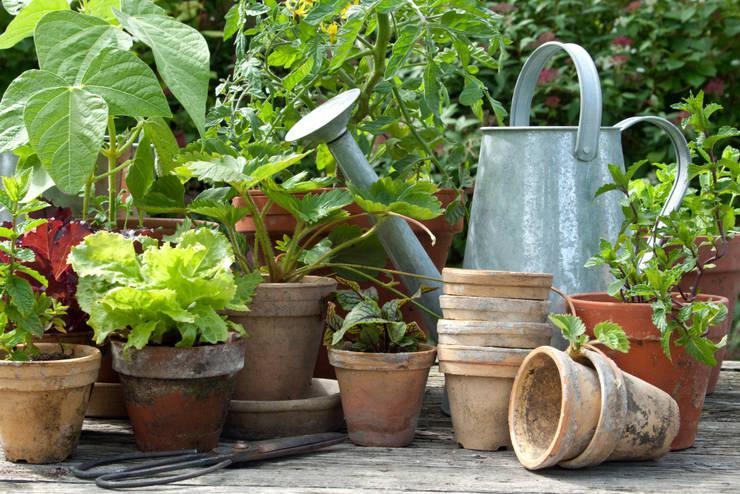 rustieke & brocante Tuin door Pflanzenfreude.de