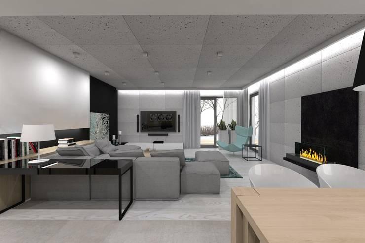 Living room by BAGUA Pracownia Architektury Wnętrz