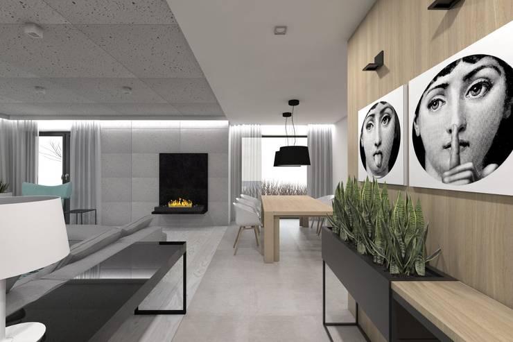 Projekt domu jednorodzinnego 2 (wykonany dla A2.Studio Pracownia Architektury): styl , w kategorii Salon zaprojektowany przez BAGUA Pracownia Architektury Wnętrz