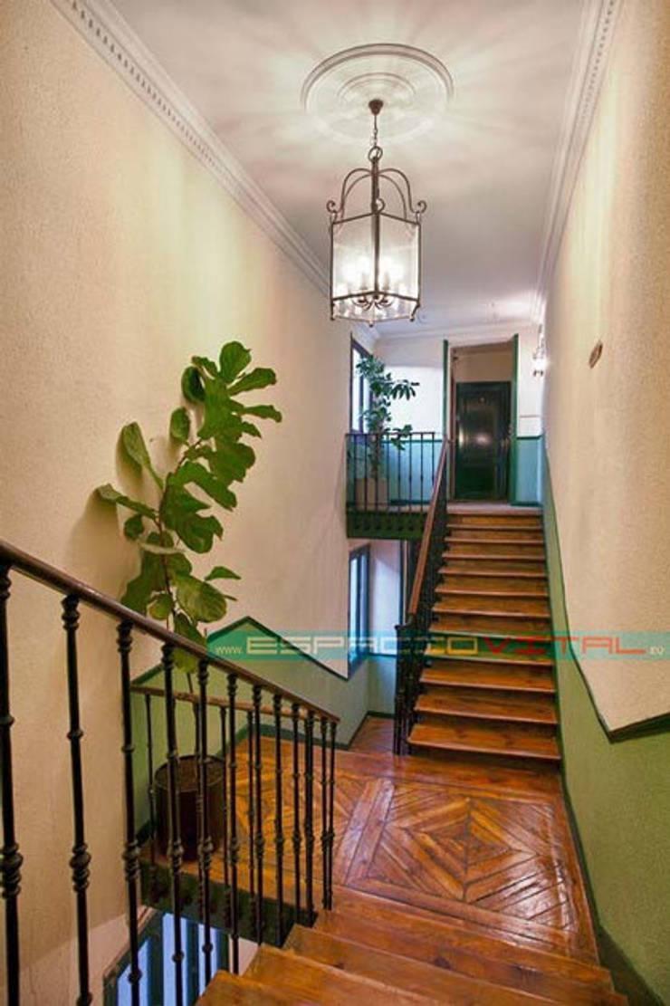 現代風玄關、走廊與階梯 根據 Javier Zamorano Cruz 現代風