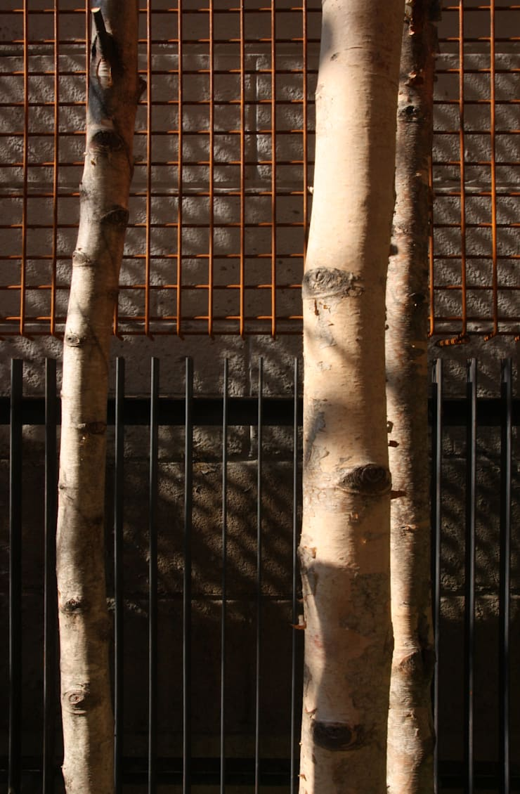 Yeon-hui dong house: ISON ARCHITECTS의  정원