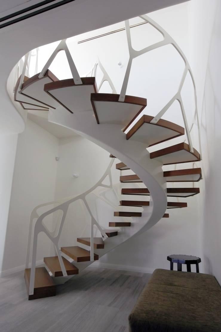 Konu Merdiven – Çakır Evi Merdiveni: modern tarz Koridor, Hol & Merdivenler