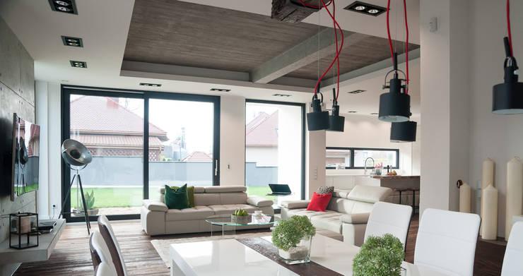 Projekt Nowa Wieś Lęborksa: styl , w kategorii Salon zaprojektowany przez Ewa Weber - Pracownia Projektowa