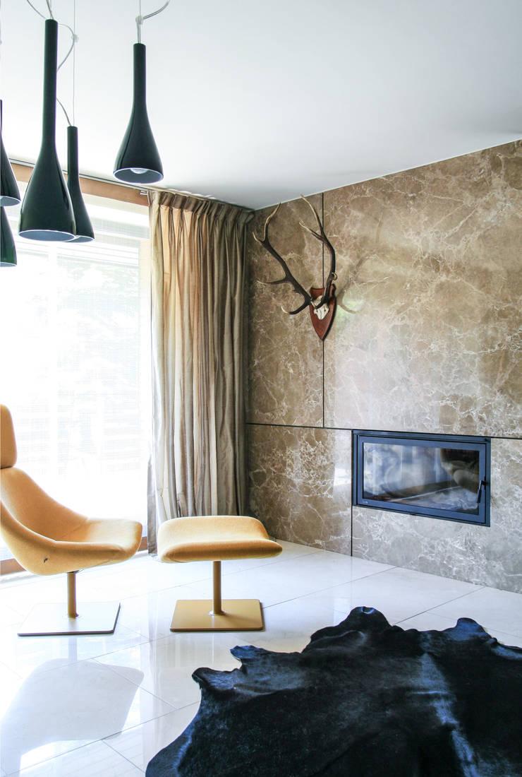 rezydencja w Katowicach: styl , w kategorii Salon zaprojektowany przez Pracownia Architektury Cechownia