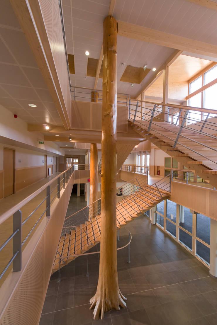 COLLEGE DE VEAUCHE  42: Ecoles de style  par atelier archipente