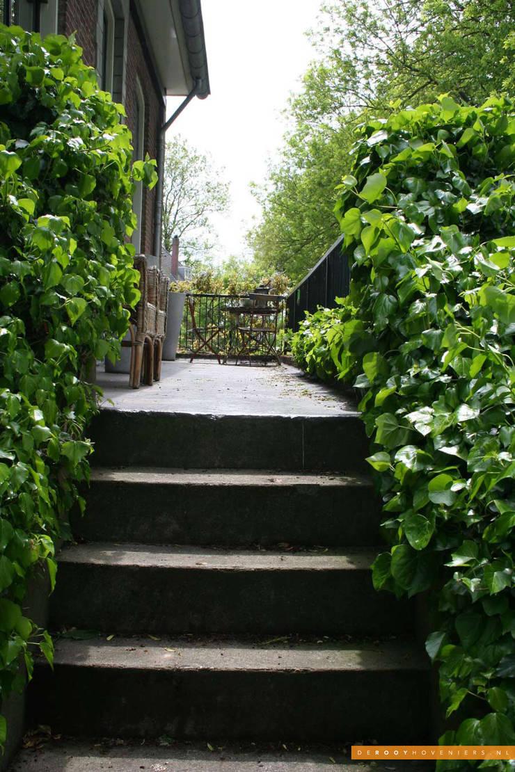 Tuin van het jaar 2014:  Tuin door De Rooy Hoveniers,