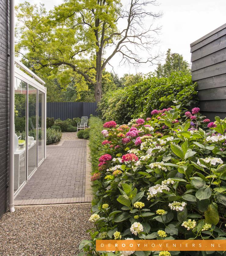 Tuin met karakter:  Tuin door De Rooy Hoveniers