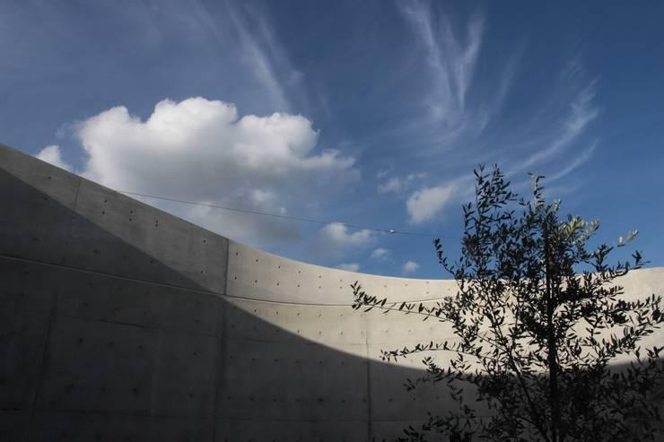 2つの中庭と大きなデッキスペースのある家(渋谷の家): 大島功市建築研究所 一級建築士事務所が手掛けた庭です。