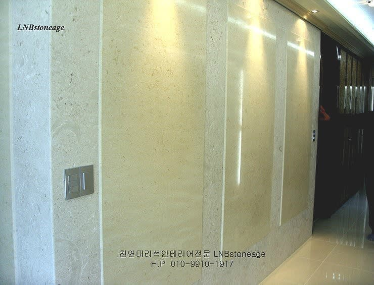 아트월: LNBstoneage의  벽 & 바닥