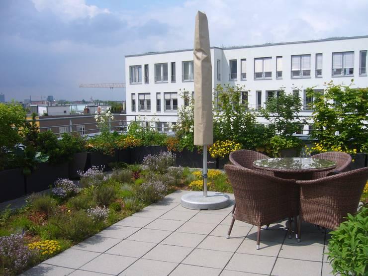 Terrazas de estilo  por Blumen & Gärten