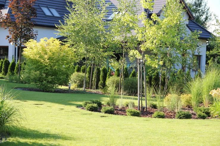 Młode drzewka: styl , w kategorii  zaprojektowany przez Garden Idea - Projektowanie Ogrodów