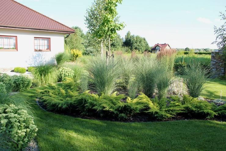 """Zwiewna rabata z delikatnych miskantów chińskich """"Morning Light"""": styl , w kategorii  zaprojektowany przez Garden Idea - Projektowanie Ogrodów"""
