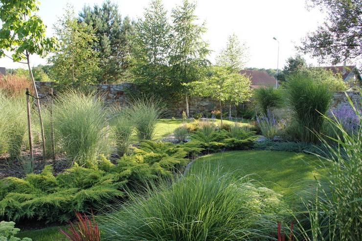 Ogród traw: styl , w kategorii  zaprojektowany przez Garden Idea - Projektowanie Ogrodów
