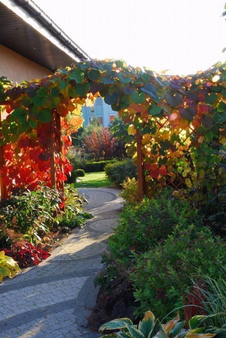 Jesienna szata winorośli japońskiej: styl , w kategorii  zaprojektowany przez Garden Idea - Projektowanie Ogrodów,Klasyczny