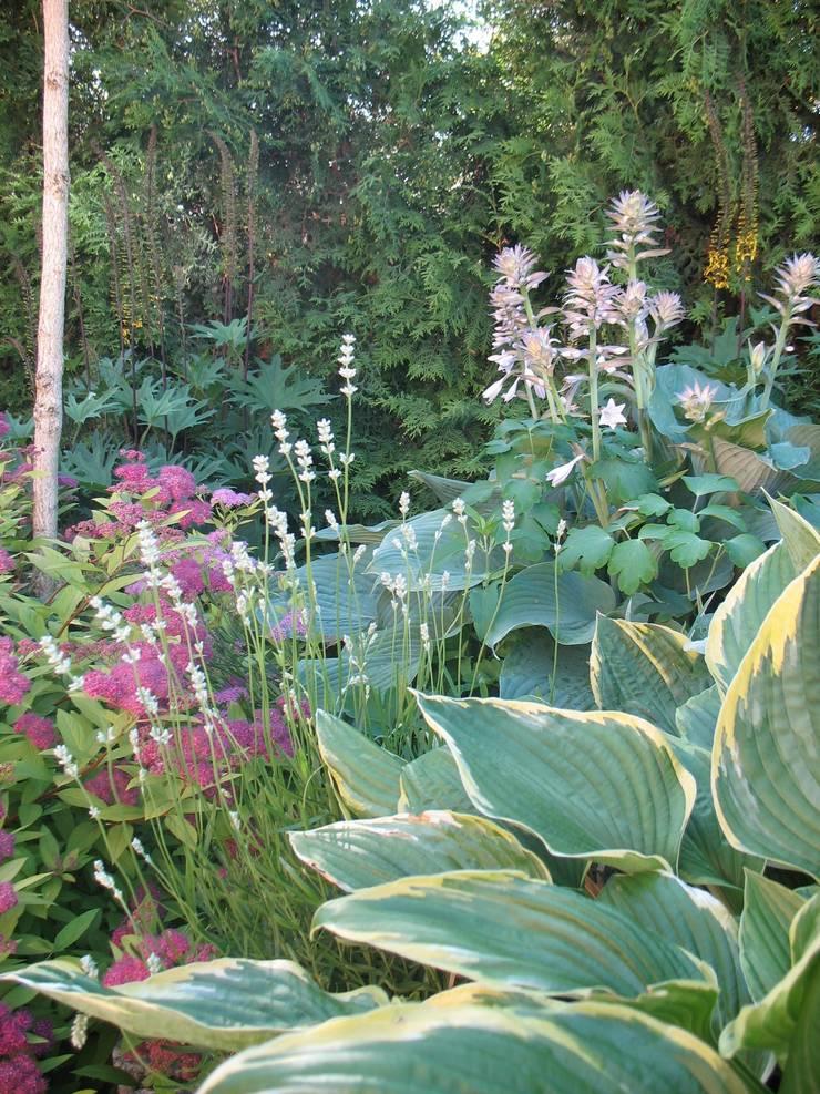 Funkie, języczki i tawuła: styl , w kategorii  zaprojektowany przez Garden Idea - Projektowanie Ogrodów,Klasyczny