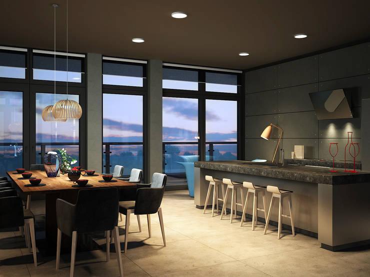 Roof apartment: Кухни в . Автор – Виталий Юров