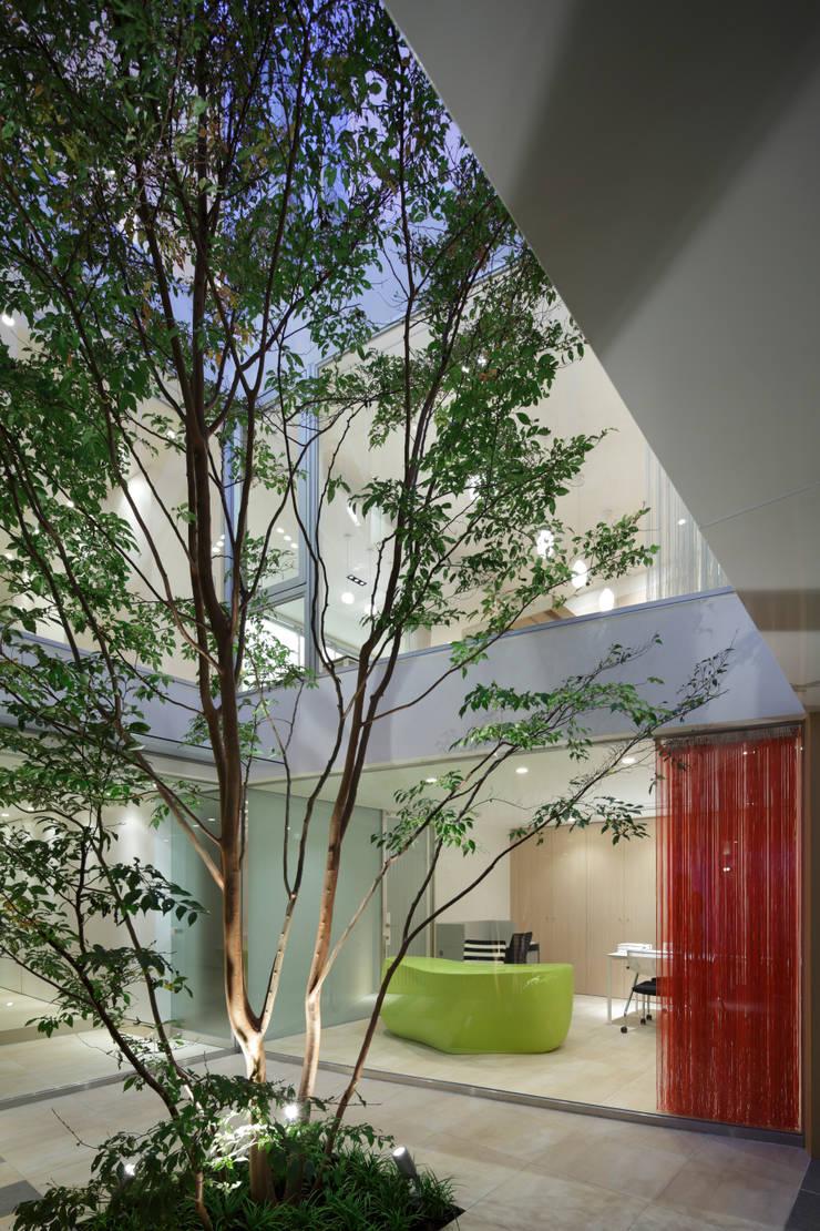 中庭 | 数寄の家 | 高級邸宅: Mアーキテクツ|高級邸宅 豪邸 注文住宅 別荘建築 LUXURY HOUSES | M-architectsが手掛けた家です。,モダン