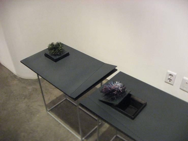 베고니아화분: Salvia Garden의  아트워크
