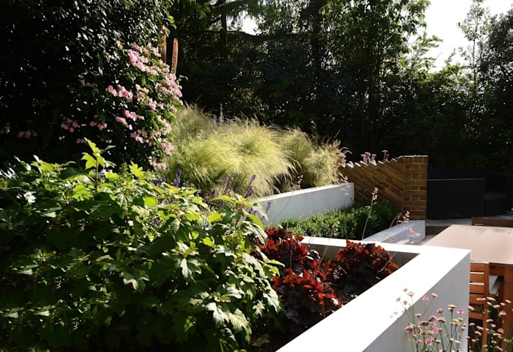 Raised Beds: modern Garden by Katherine Roper Landscape & Garden Design