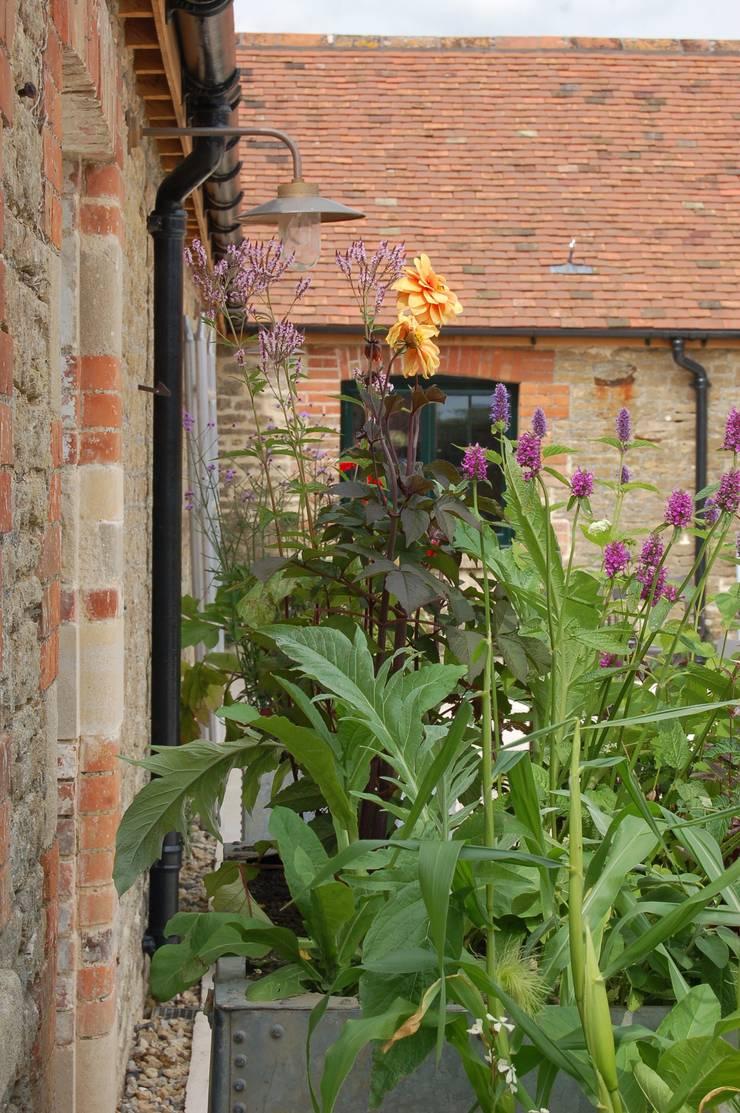 Planters:  Garden by Petherick, Urquhart & Hunt Landscape Consultancy