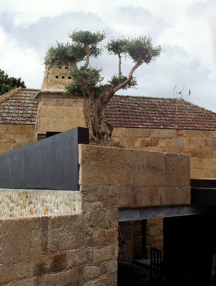 Quinta de Santa Cruz: Jardins  por Artspazios, arquitectos e designers