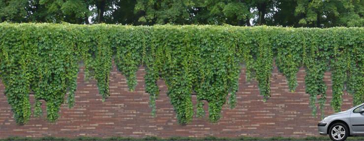 Impressiebeeld Geluidswerende voorziening N317 nabij het beschermde stadsgezicht van Doesburg: een gemetselde muur met overhangende beplanting.:   door Buro Topia stads- en landschapsontwerp