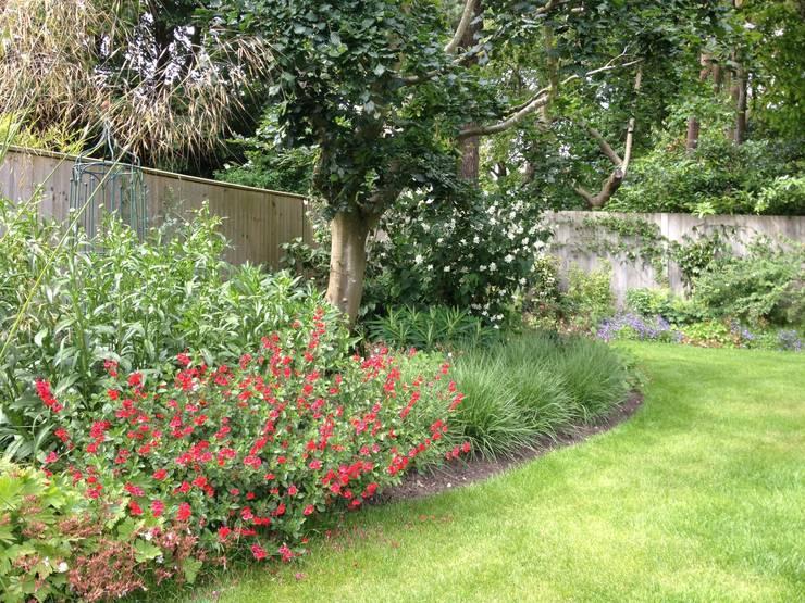 Naturalistic garden in Surrey Jardines de estilo rural de Roeder Landscape Design Ltd Rural