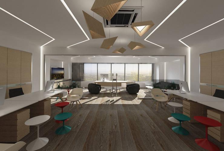 Inan AYDOGAN /IA  Interior Design Office – DONAT COLLECTION OFFICE:  tarz Ofis Alanları