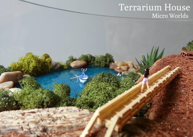 Terrarium House – Terrarium 'Happy Ending':  tarz Ev İçi