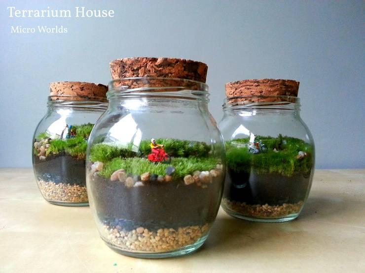 Hogar de estilo  por Terrarium House