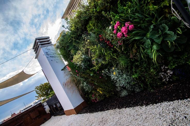jardín y huerto: Terrazas de estilo  de thesustainableproject